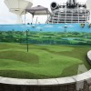 Golf link on Princess Diamond Ship
