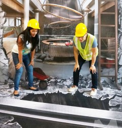 3D mural for Ritz Carlton Hotel